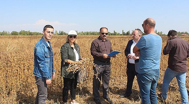 Iğdır'da İlk Defa Soya Üretimi Gerçekleştirildi