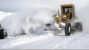 Yoğun Kar 60 Köy Yolunu Kapadı