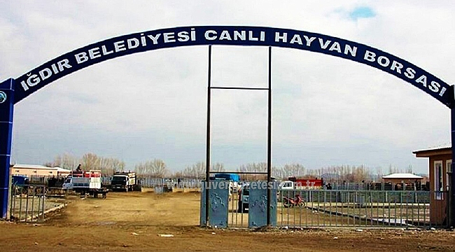 Iğdır'da Canlı Hayvan Pazarı Önlem Amaçlı Kapatıldı