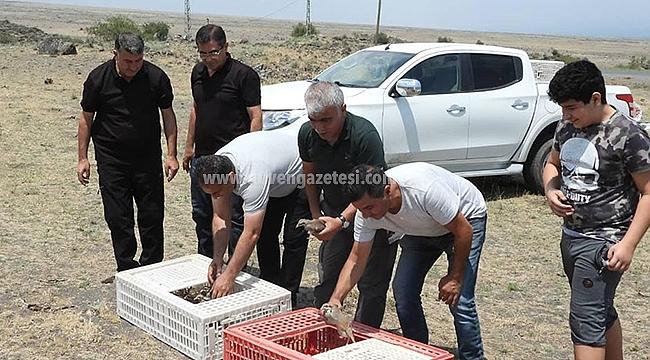750 Kınalı Keklik, Ağrı Dağı Milli Parkına Bırakıldı