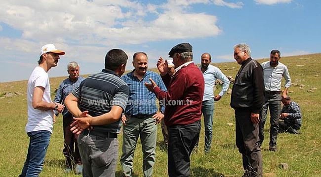 İl Tarım Müdürü Yolcu Tuzluca Köy ve Meralarını İnceledi