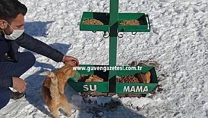 Iğdır Belediyesi Sokak Hayvanlarını Unutmadı